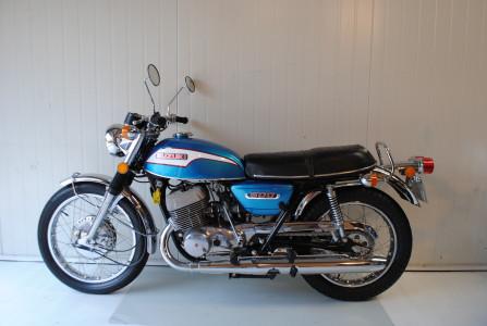 Suzuki T
